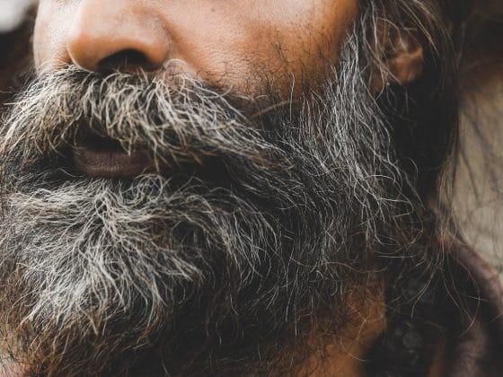 Beard Statistics