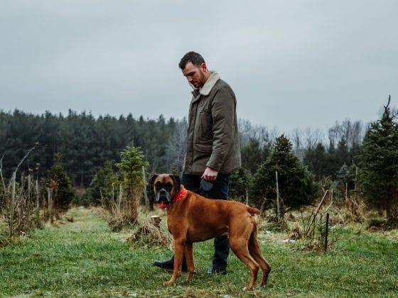 Pet Ownership Stats